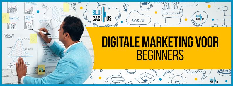 BluCactus - Digitale marketing voor beginners - title