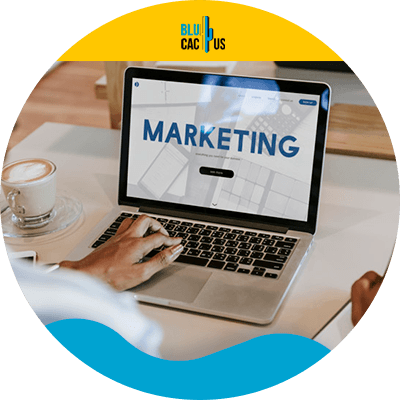 BluCactus - Digitale marketing voor beginners - marketing
