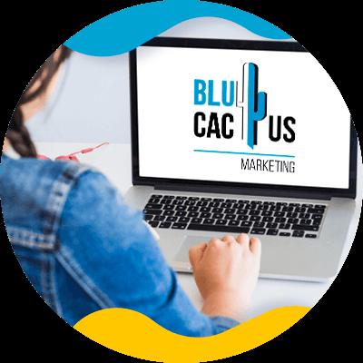 Blucactus-- wat een huisstijlpakket - wat-is-voor
