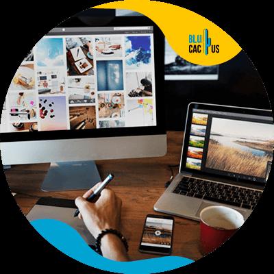 Blucactus-1- Succesvol webdesign --Goed-grafisch-ontwerp