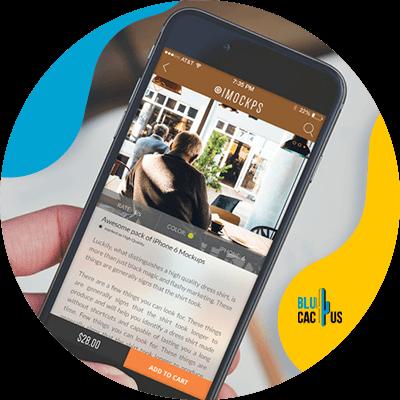 Blucactus-13-De-mobiele-website