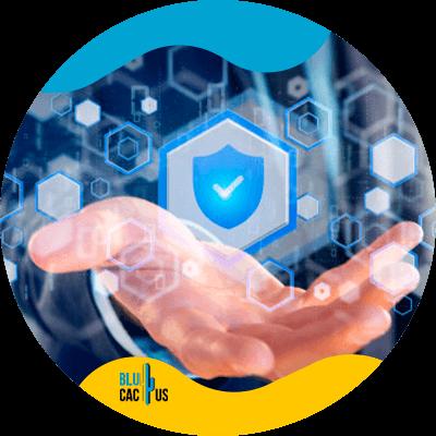 Blucactus-- Succesvol webdesign -14-Security-web