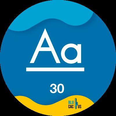 Blucactus- - succesvolle bedrijfspresentatie - 30-punten-voor-de-minimale-tekstgrootte