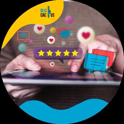 Blucactus-- Positieve recensies voor websites -All-Reviews-Must-Answer