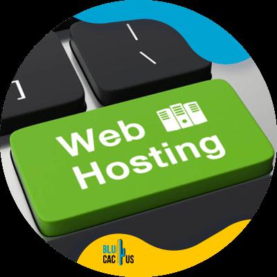 Blucactus-- Succesvol webdesign -Betrouwbare-webhosting