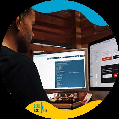 Blucactus-- Succesvol webdesign -Elements-in-design-van-succesvolle-websites
