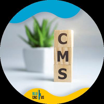 Blucactus-Gebruik-een-goed-CMS-voor-e-commerce