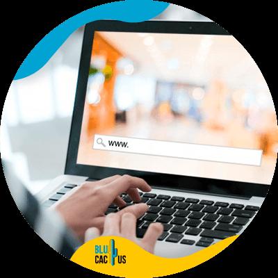 Blucactus-- online winkel - Hoe-maak je-je-online-winkel-in-12-stappen-gemakkelijk-snel-en-met-weinig-budget