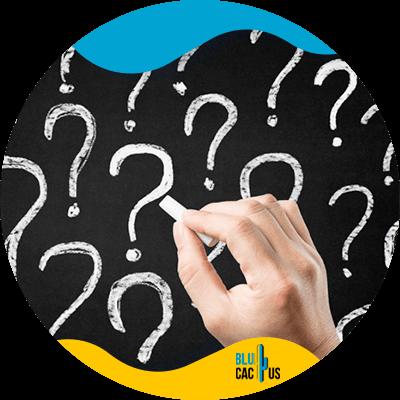Blucactus- - succesvolle bedrijfspresentatie - Stel-ze-een-vraag
