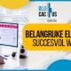 BluCactus - Succesvol webdesign - TITLE
