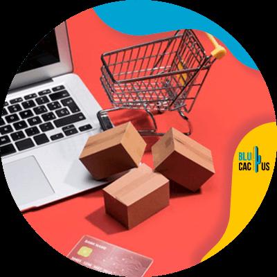 Blucactus- online winkel - -betalingsgateways