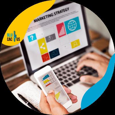 Blucactus-- online winkel - definieer-uw-digitale-strategie