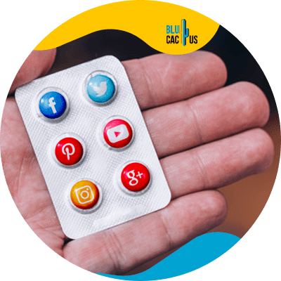 Blucactus-Gebruik-het-meest-geschikte-platform-om-uw-publiek-te-bereiken
