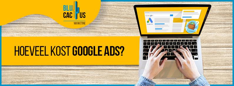 BluCactus - Google Ads-campagne - title
