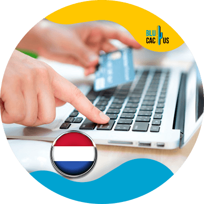 Blucactus- Google Ads- Google Ads-campagne --campagne --Hoeveel-kost-een-Google-Adwords-campagne-in-Holland (1)