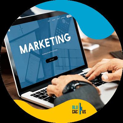 Blucactus-Marketing