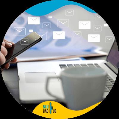 Blucactus-e-mailmarketingcampagnes