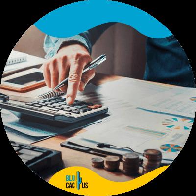 Blucactus-financiering