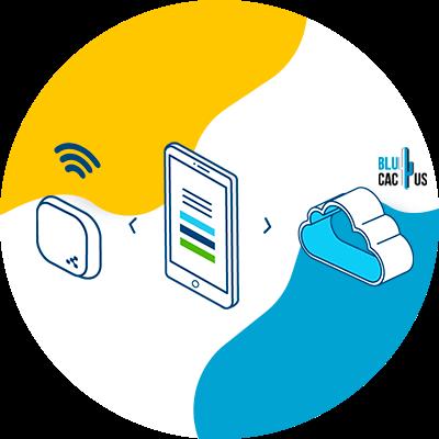 Blucactus - meubels online - -technologie-Beacon
