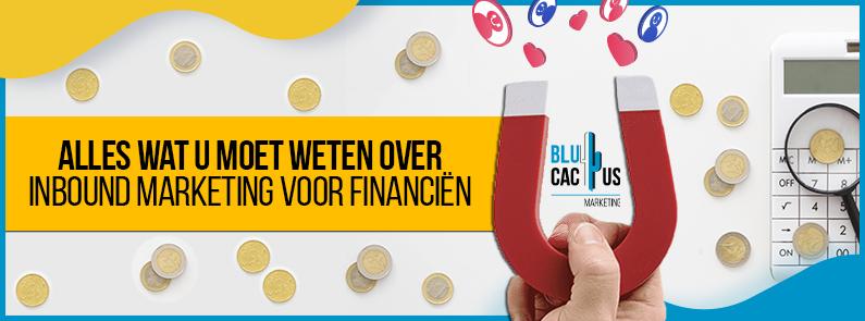 BluCactus - Inbound marketing en financiën - title