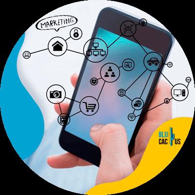 Blucactus-wat-is-digitale-marketing - automerken