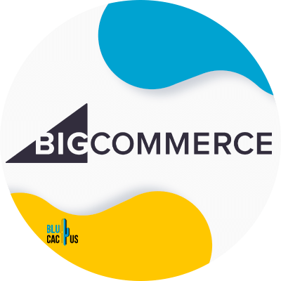 BluCactus - webtechnologieën - bigcommerce