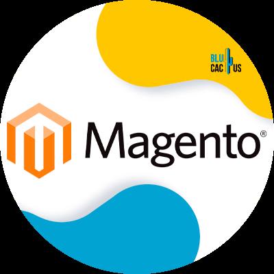BluCactus - webtechnologieën - magento