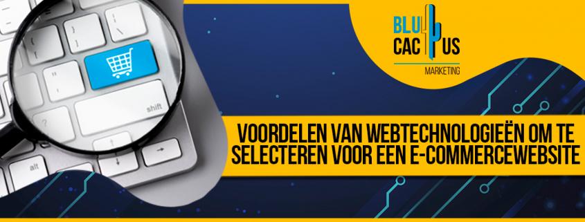 BluCactus - webtechnologieën - title