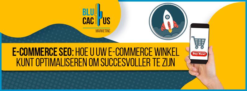 BluCactus - E-Commerce SEO - banner